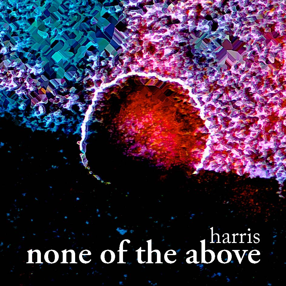 cover of none of the above